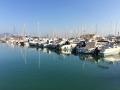 MALLORCA ENTDECKEN: Puerto Pollensa