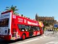 Palma City Bus 01