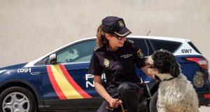 Polizisten bei der Operation Sommer