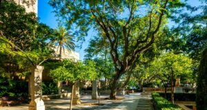 Gartenanlage Estatua Es Zoner in Palma de Mallorca, Mallorca, Sp