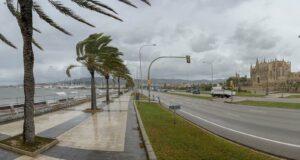 Regen Palma de Mallorca